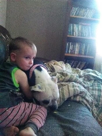 bulldogges love family and children